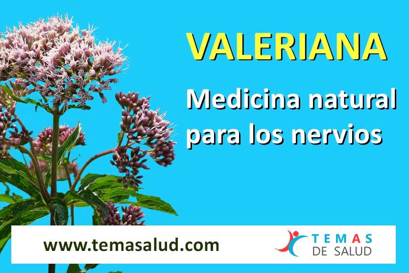 Valeriana para los nervios